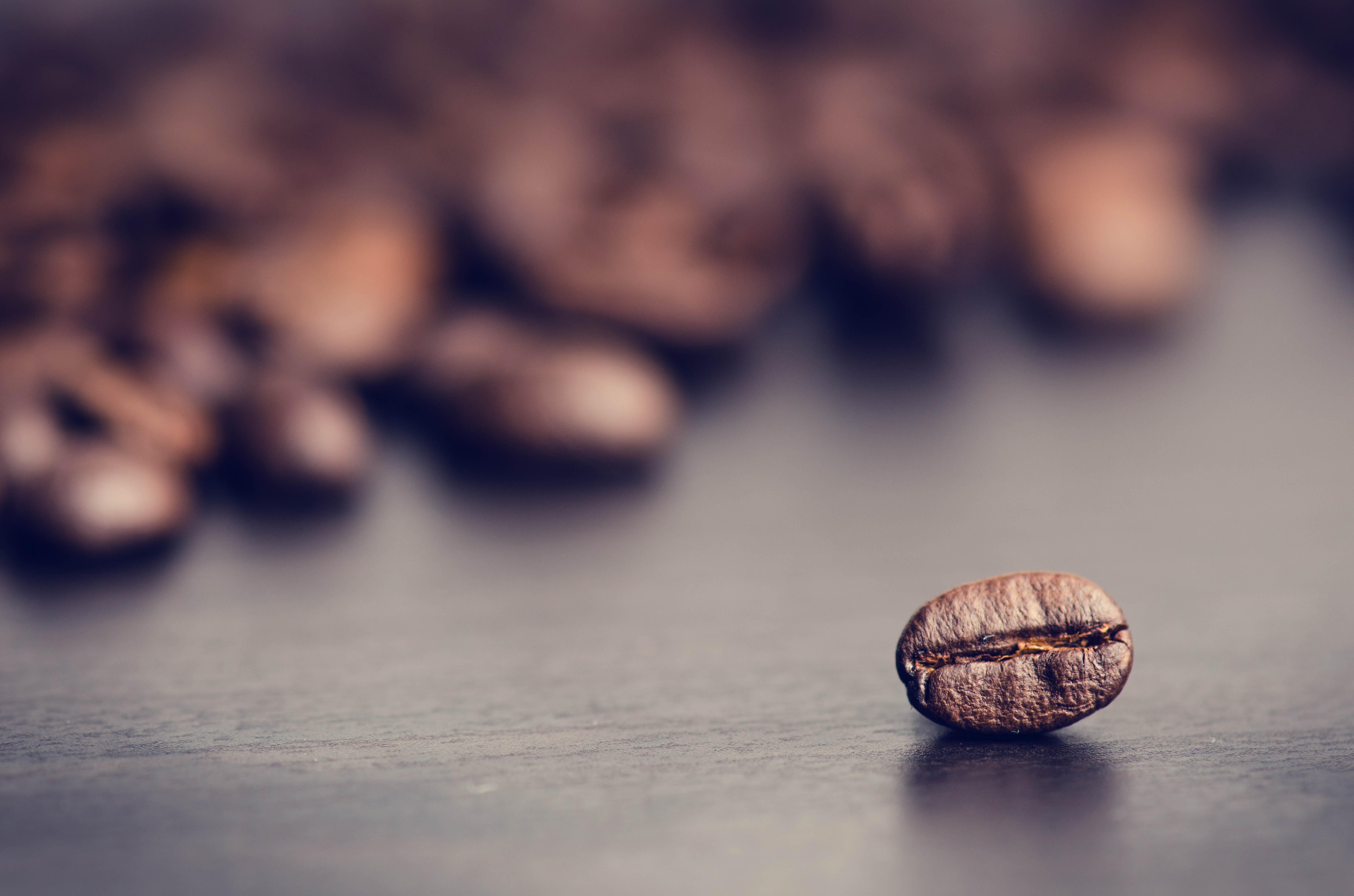 Coffee bean large